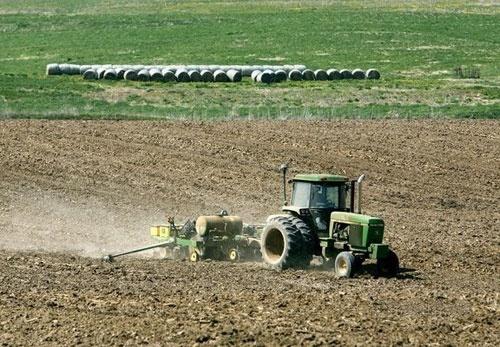 """""""Колосальна помилка"""": Данилюк озвучив нюанси запуску ринку землі для економіки України фото, ілюстрація"""