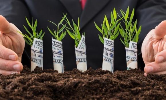 Где малым и средним аграриям искать деньги на развитие бизнеса? фото, иллюстрация