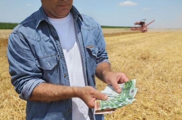 Заробітна плата в сільському господарстві за два роки зросла більш ніж у 2 рази  фото, ілюстрація