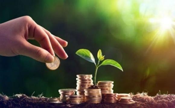 Рада поддержала создание фонда гарантирования кредитов в сельском хозяйстве фото, иллюстрация