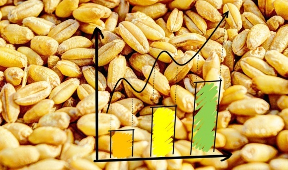 Найзначніше падіння з грудня 2017 року: у липні Індекс продовольчих цін ФАО різко знизився фото, ілюстрація