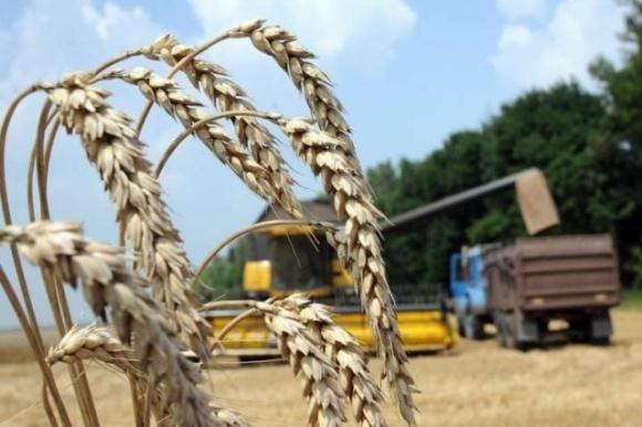Фермери-ФОПи зможуть отримати компенсацію за сплачений ЄСВ, — Милованов фото, ілюстрація
