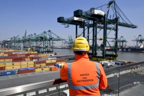 Порт Антверпена признано европейским центром незаконной торговли пестицидами фото, иллюстрация