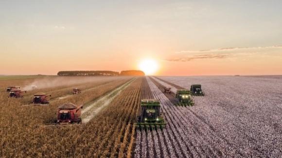 Новая глобальная стратегия BASF будет стимулировать развитие инноваций в агросекторе фото, иллюстрация