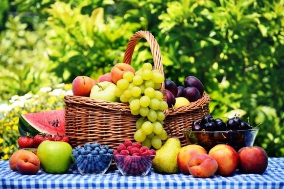 Угроза потери урожая яблок и груш в Украине пока сохраняется фото, иллюстрация