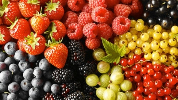 Заморозки та коронавірус: науковець розповів, що загрожує майбутньому врожаю фруктів фото, ілюстрація