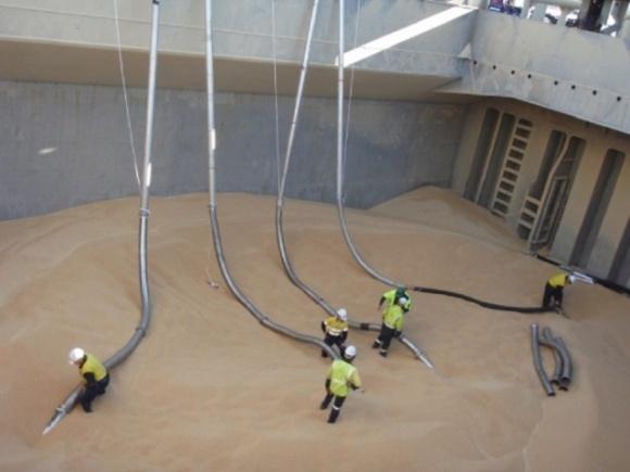 УЗА просит правительство отменить обязательную рециркуляцию при фумигации зерна на экспорт фото, иллюстрация