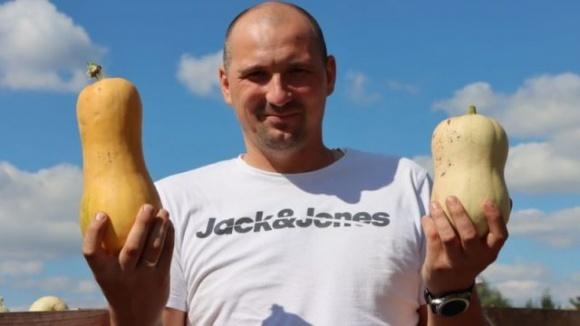 Як в Україні вирощують гарбузи для Європи фото, ілюстрація