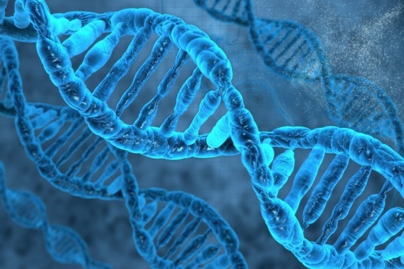 Чи дасть технологія CRISPR-Cas старт новій «зеленій революції»? фото, ілюстрація