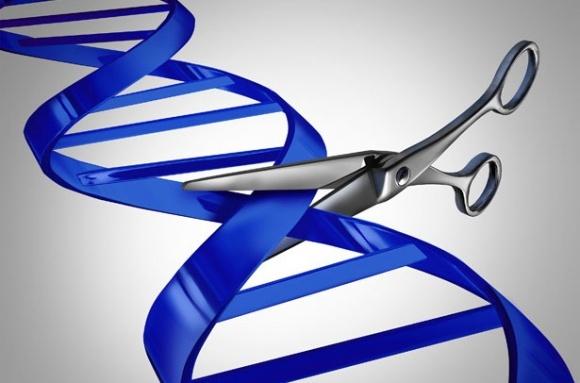 Британські вчені — на боці генетичного редагування фото, ілюстрація