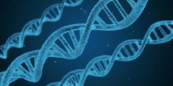 BASF використовуватиме найновішу технологію генетичного редагування фото, ілюстрація