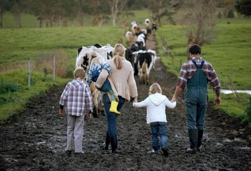 В Україні затверджено порядок надання сімейним фермерським господарствам додаткової фінансової підтримки фото, ілюстрація