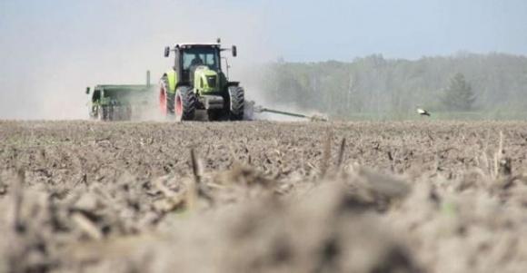 В Україні посіяли майже 4,5 мільйона гектарів ярих зернових фото, ілюстрація