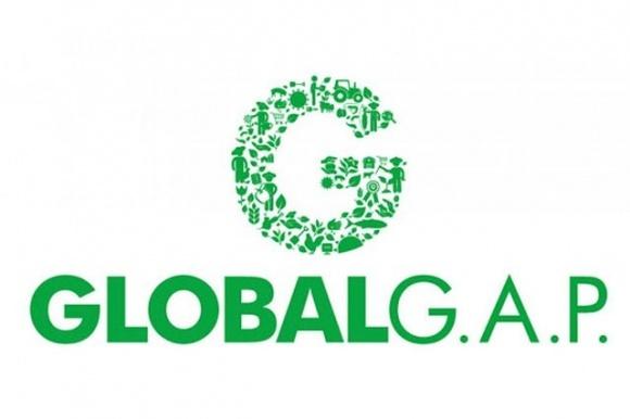 Отныне украинским фермерам будет легче сертифицироваться по стандартам GLOBALG.A.P. фото, иллюстрация