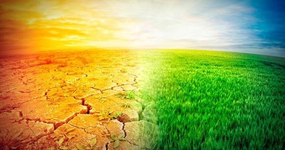 2020 год станет самым теплым за всю историю метеорологических наблюдений фото, иллюстрация