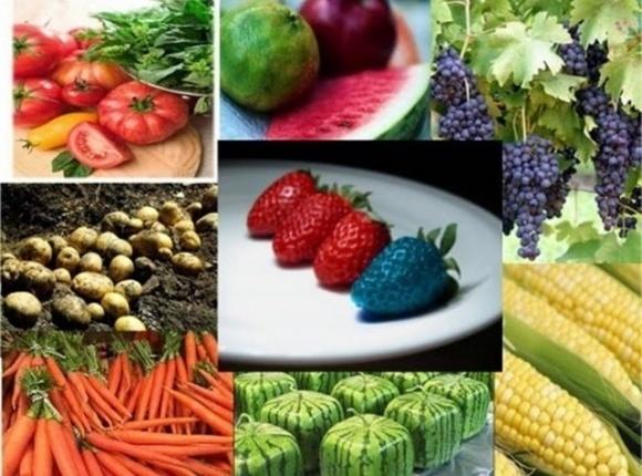 Шість міфів про ГМО фото, ілюстрація