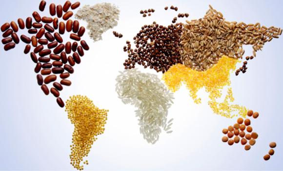 Страны устанавливают правила для ГМО-культур, исходя из собственных обстоятельств фото, иллюстрация