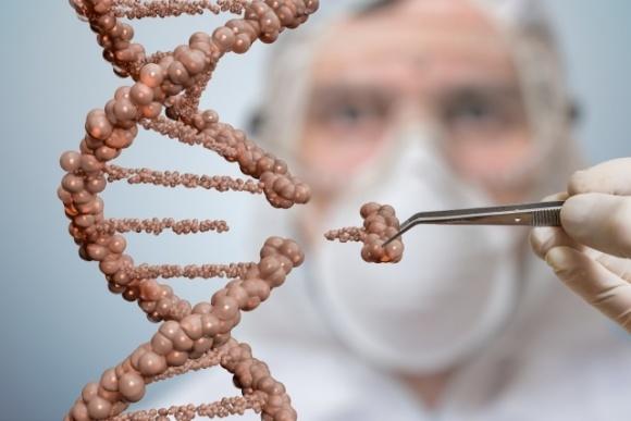 В Британии собираются легализовать редактирование ДНК ради урожаев  фото, иллюстрация