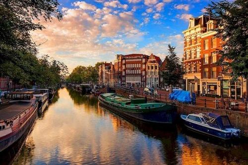 Голландский аграрный экспорт в 2018 г. превысил 90 млрд евро фото, иллюстрация