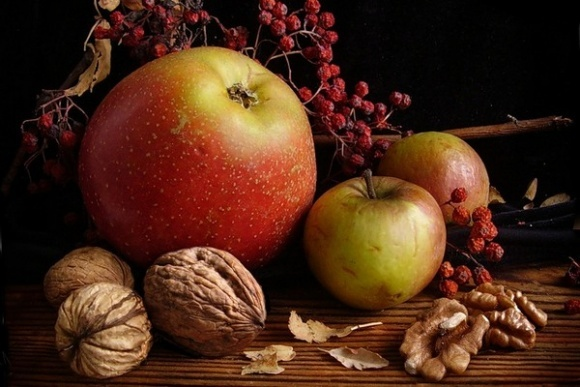 В Хмельницкой области будут выращивать имунностийкие фрукты и орехи (видео) фото, иллюстрация
