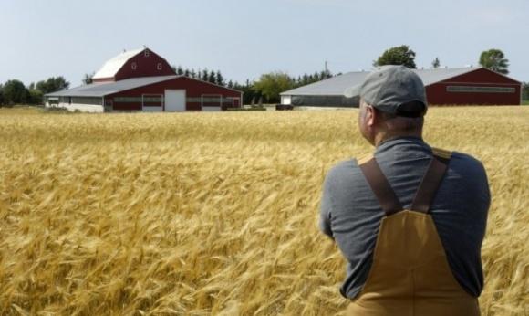 Дотации фермерам будут распределять вручную фото, иллюстрация
