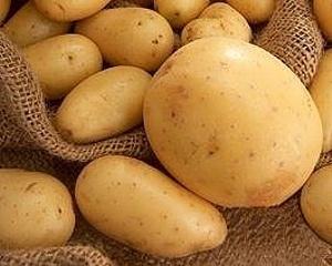 Мировой рынок продуктов переработки картофеля ежегодно растает на 5-10% фото, иллюстрация