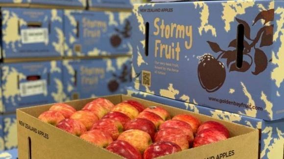 Що робити, якщо сад постраждав від урагану? Створити бренд «Ураганний фрукт» фото, ілюстрація