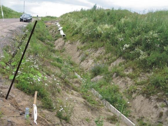 Агрофірму з Буковини звинувачують у самовільному захопленні землі фото, ілюстрація