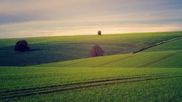 Рада схвалила законопроєкт з планування використання земель у громадах фото, ілюстрація