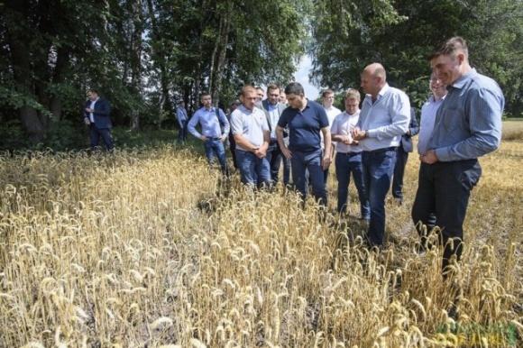 Мелкий фермер может просто исчезнуть: Гройсман раскритиковал новый налог на землю фото, иллюстрация