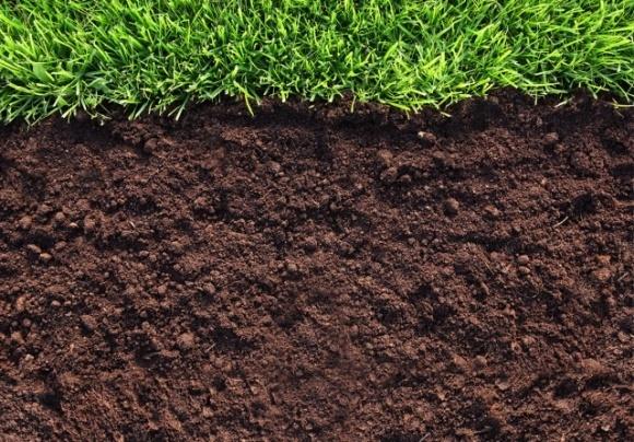 МХП возрождает плодородие украинских почв фото, иллюстрация