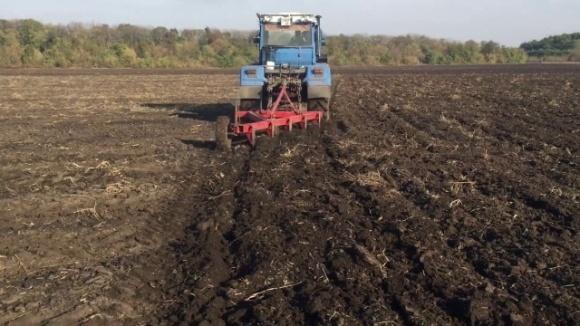 В Минэкономики назвали стоимость гектара после открытия рынка земли фото, иллюстрация