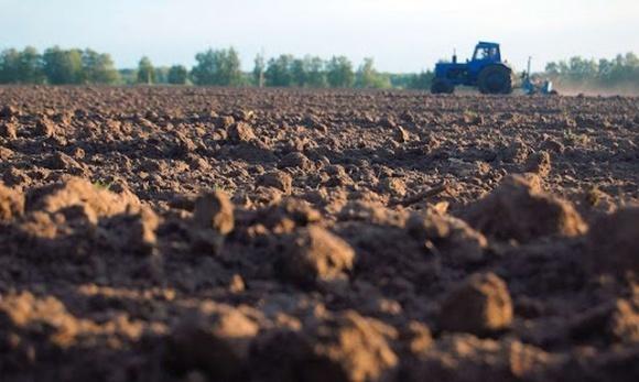 В Україні фіксується найкраще за 5 років зволоження ґрунту під сівбу озимих фото, ілюстрація