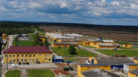 Усі 118 орендодавців землі з Довпотова отримали виплату від «Ґудвеллі Україна» зерном фото, ілюстрація