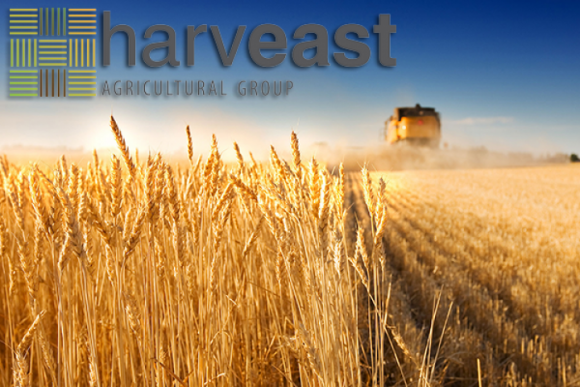 HarvEast серьезно занялся вопросом семеноводства фото, иллюстрация
