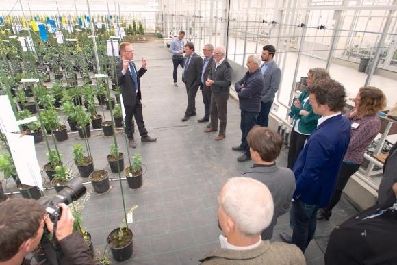 Голландская овощная компания открыла новый селекционный центр фото, иллюстрация