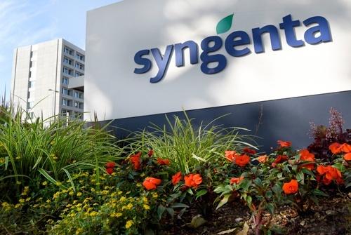 Syngenta: прискорення інновацій у мінливому світі фото, ілюстрація