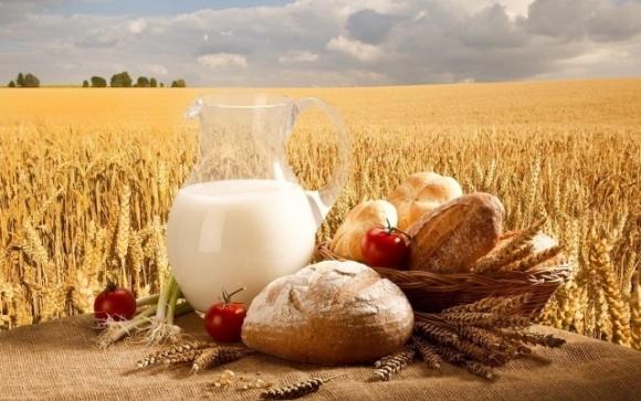 Что будет с ценами на хлеб и молоко: в Кабмине прояснили ситуацию фото, иллюстрация