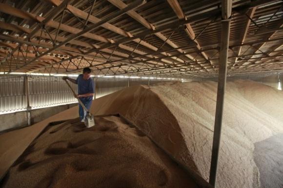 Украина теряет почти четверть зерна из-за дефицита зернохранилищ фото, иллюстрация