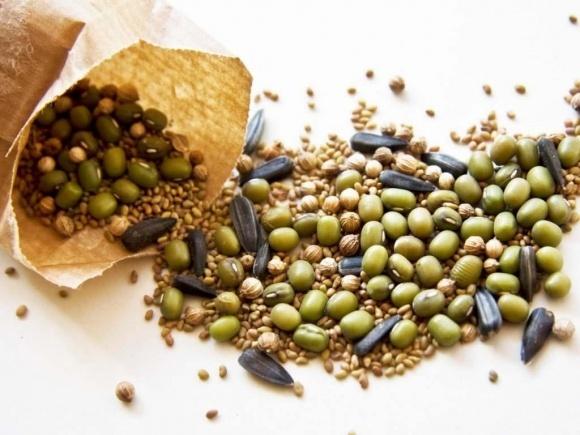 2018 року Україна закупила найбільше насіння у Франції – Інститут аграрної економіки фото, ілюстрація