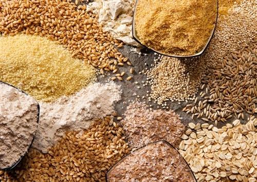 Експорт зернових і олійних нового врожаю вчергове стане рекордним фото, ілюстрація