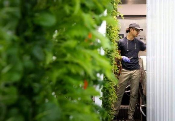 Брат Илона Маска готовит хайтек-революцию в сельском хозяйстве фото, иллюстрация