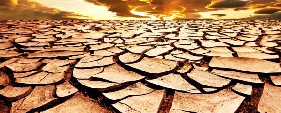 Из-за деградации пахотных земель Украина ежегодно теряет 20 млрд грн фото, иллюстрация