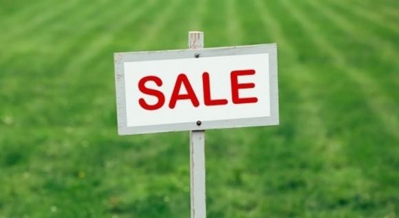 Електронні земельні аукціони будуть проходити з використанням платформи ProZorro.Продажі фото, ілюстрація
