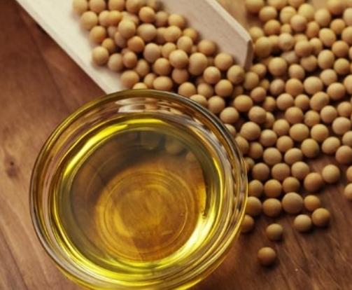 Україна чекає новий максимум в експорті соєвої олії фото, ілюстрація