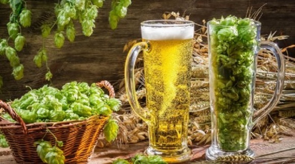 Виробництво пива і солоду в Україні зросло фото, ілюстрація