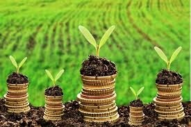 Окупність інвестицій в аграрний сектор  надзвичайно приваблива для інвесторів – Інститут аграрної економіки фото, ілюстрація