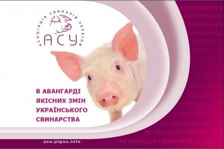 """Асоціація """"Свинарі України"""" розповіла про нові ринки збуту  фото, ілюстрація"""