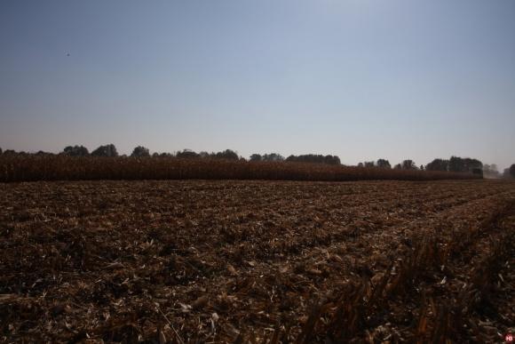 Группа компаний «УкрАгроКом» и «Гермес-Трейдинг» покупают агрохозяйство «Интер-Контакт-Агро»  фото, иллюстрация