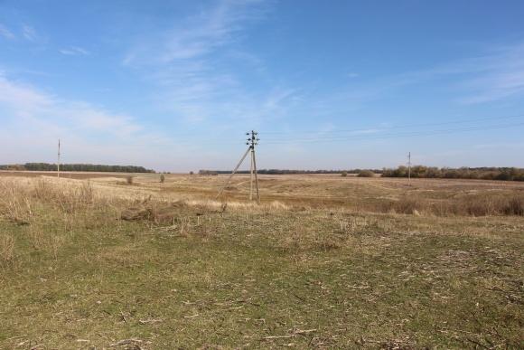 Щоб підвести електроенергію на поле, треба дати хабара фото, ілюстрація